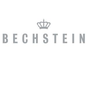 پیانو آکوستیک بکشتاین آلمان Bechstein